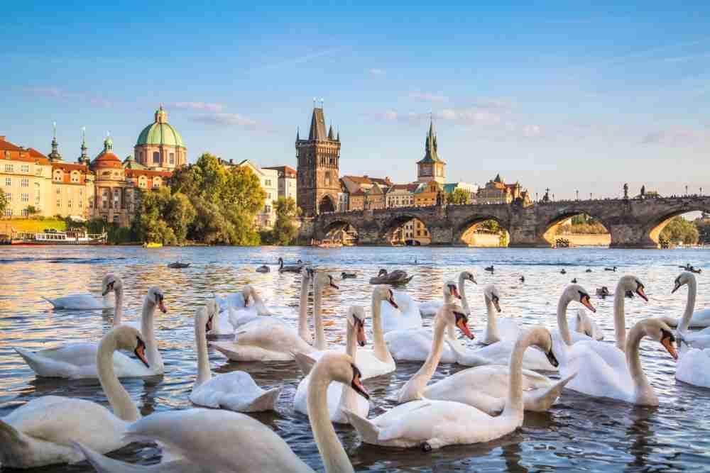 Naplavka, Prague, Czech Republic